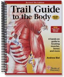 Clinical Massage Therapy Textbooks